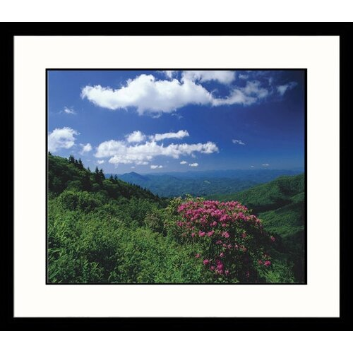 Great American Picture Landscapes 'Nantahala Forest' by Adam Jones Framed Photographic Print