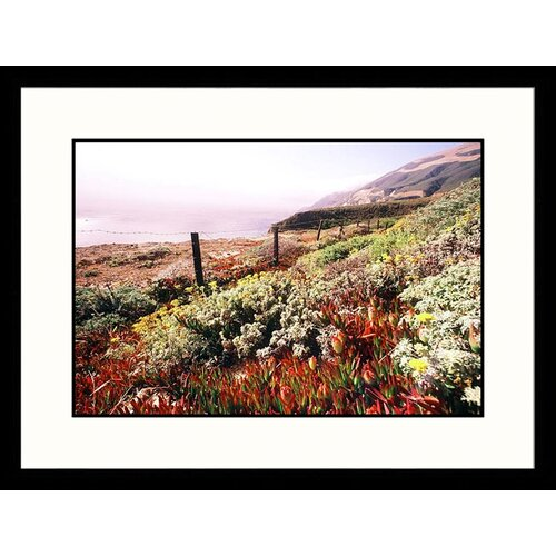 Landscapes 'Lush Landscape Big Sur Coast, California' Framed Photographic Print