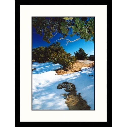 Great American Picture Landscapes 'Canyon de Chelly National Monument, Arizona' by James Denk Framed Photographic Print