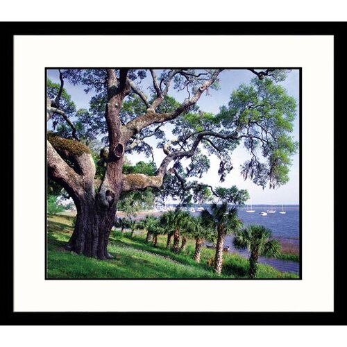 Great American Picture Landscapes 'Grand Old' by Mark Gibson Framed Photographic Print