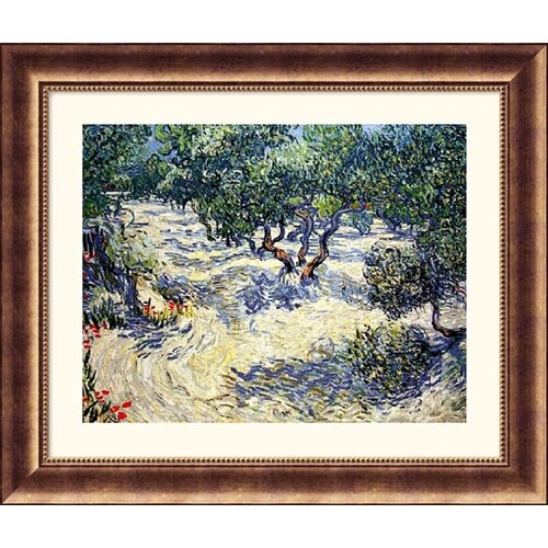 Museum Reproductions Olive Orchard by Vincent Van Gogh Framed Painting Print