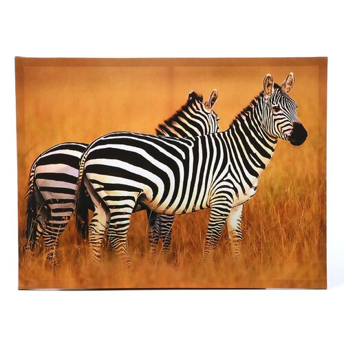 Plains Zebras Photographic Print on Canvas
