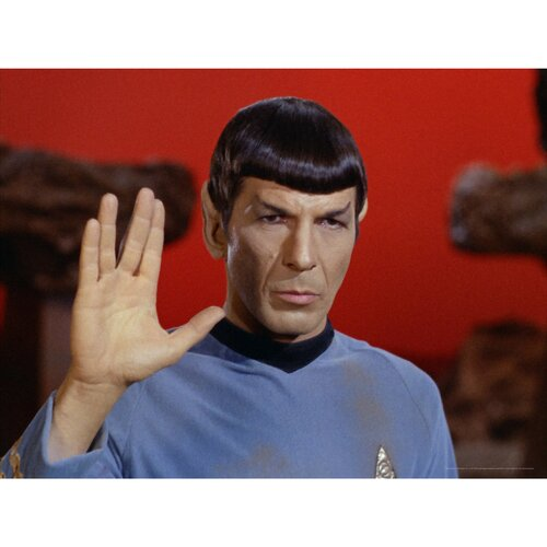 Oriental Furniture Star Trek Commander Spock Photographic Print on Canvas