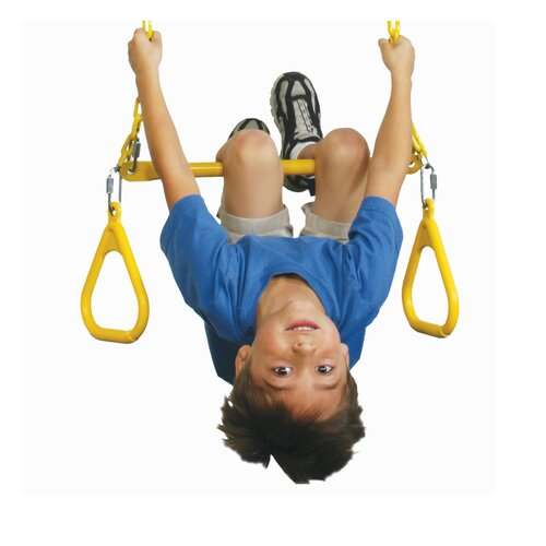 Swing-n-Slide Heavy Duty Ring/Trapeze