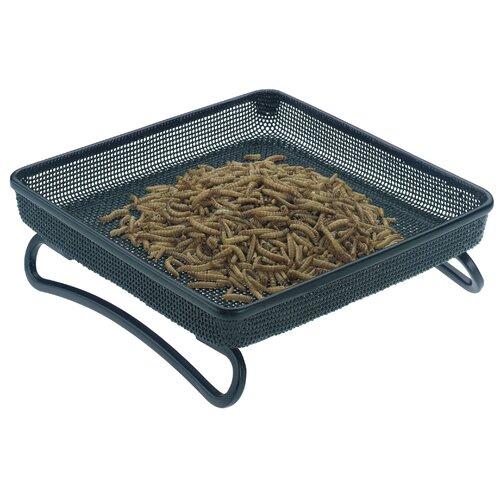 Bird Feeder Trays Compact Tray Bird Feeder