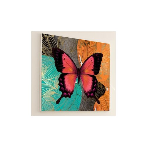 Metamorphosis Modern Butterfly #4 Framed Graphic Art