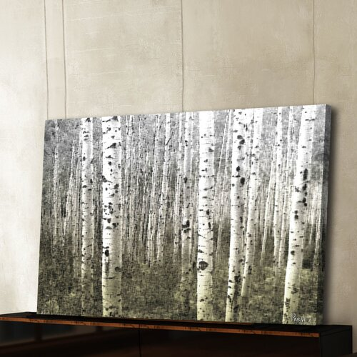 Parvez Taj Aspen Highlands by Parvez Taj Graphic Art on Canvas