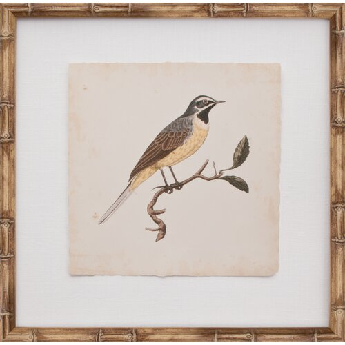 Mirror Image Home Mini Nozeman Bird V Framed Graphic Art