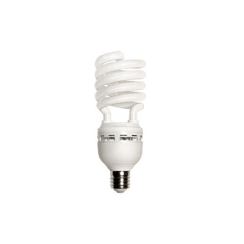 Energetic Lighting 65W 120-Volt Fluorescent Light Bulb