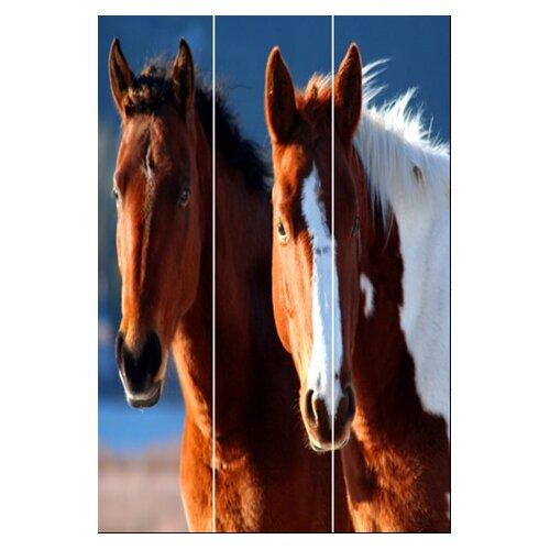 "Screen Gems 72"" x 48"" Horse Screen 3 Panel Room Divider"