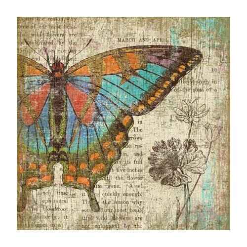 Butterfly 2 Left Wall Art by Suzanne Nicoll Graphic Art Plaque