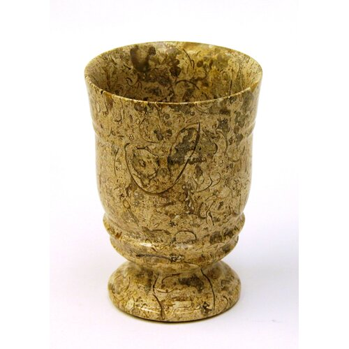 Nature Home Decor Fossil Stone Tumbler