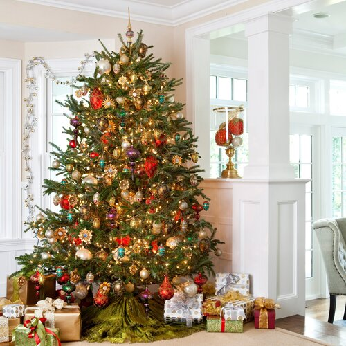BEST PRICE Fresh North Carolina Fraser Fir Christmas Tree 7.5-8 ...
