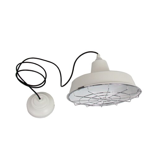 1 CFL Light Pendant