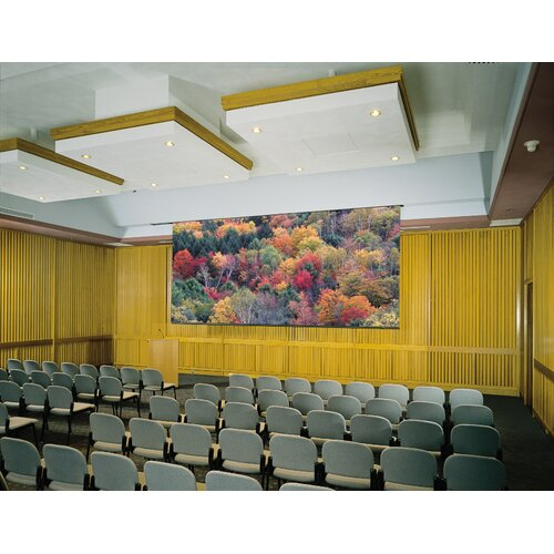 Claridge Products Paramount Matte White Electric Projector Screen