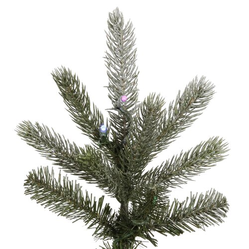 Vickerman Co. Frosted Frasier Fir 6.5' Green Artificial Christmas Tree with 330 Multicolored LED Lights with Stand