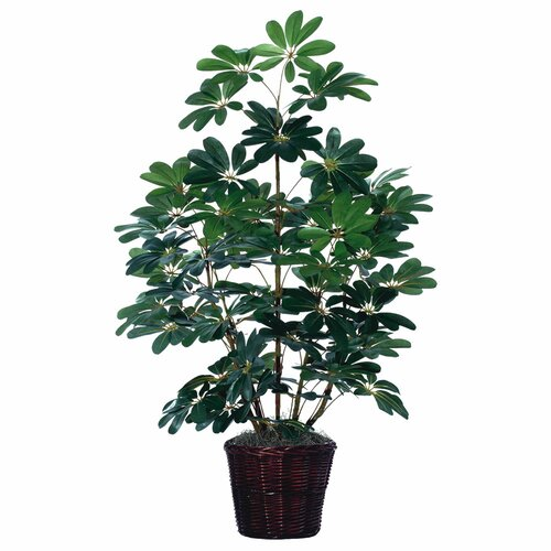 Vickerman Co. Deluxe Artificial Schefflera Tree in Basket