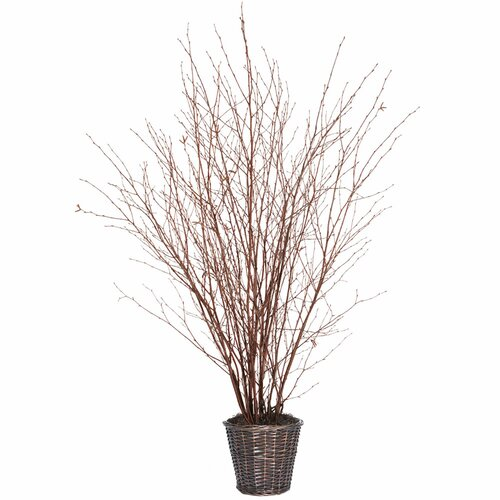 Vickerman Co. Natural Winter Birch Tree in Basket