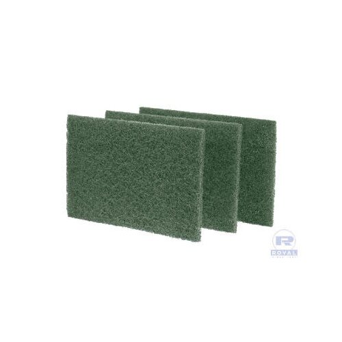 Royal Paper Medium-Duty Scouring Pad in Green - 10/Pack