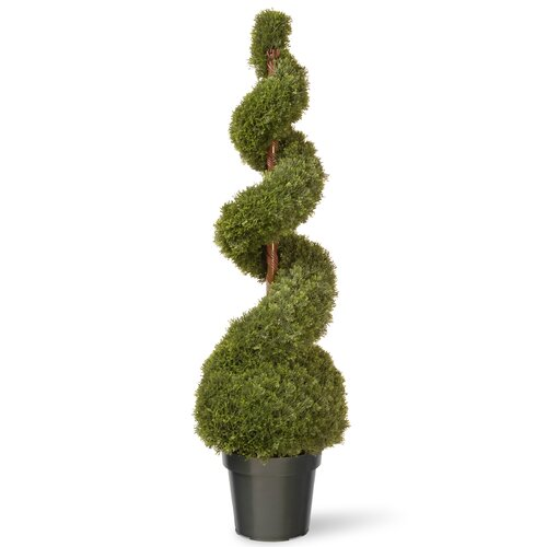 Cedar Spiral Tree with Ball in Green Pot