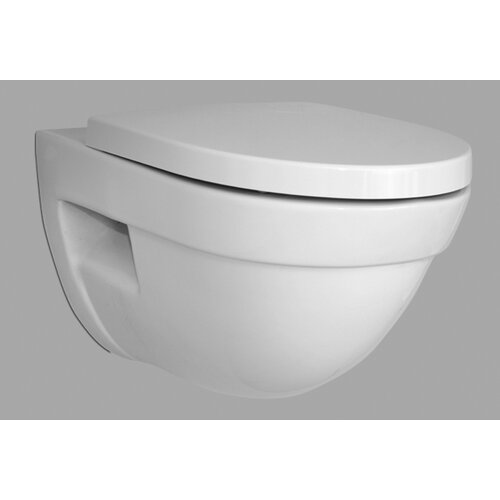 Form500 Wall Mounted Elongated 1 Piece Toilet