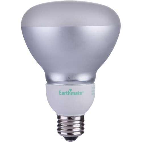 11W Grey (2700K) Fluorescent Light Bulb