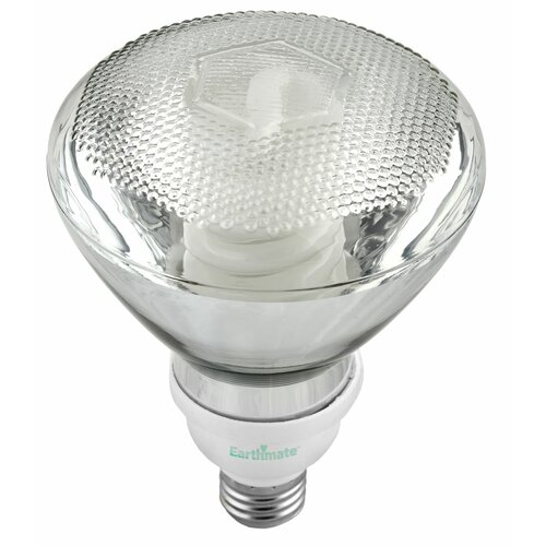23W (2700K) Fluorescent Light Bulb