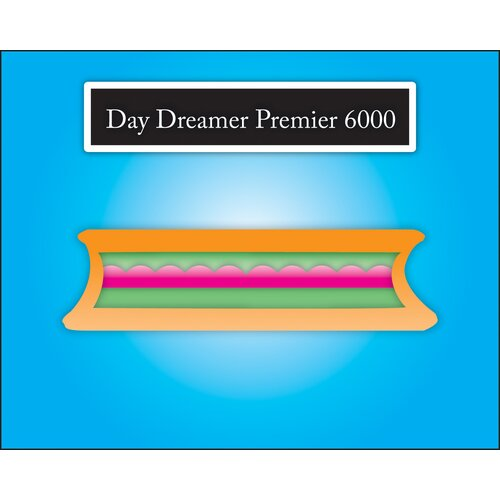 "Elite Products Day Dreamer Cotton and Foam Premier 6000 6"" Futon Mattress"