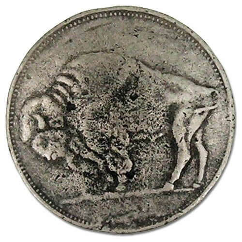 "Anne at Home Curiosities Buffalo Head Nickel 1.5"" Round Knob"