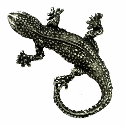 "Anne at Home Curiosities Lizard Distressed 2.5"" Knob"