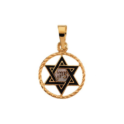 Jewelryweb 14k Yellow Gold Star Of David Pendant14x11mm
