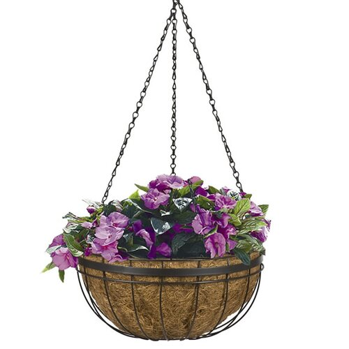 CobraCo Queen Elizabeth Hanging Basket