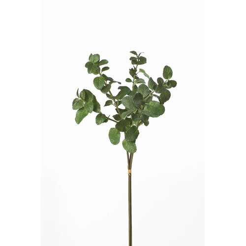 Sage & Co. Triple Mint Stem Bundle