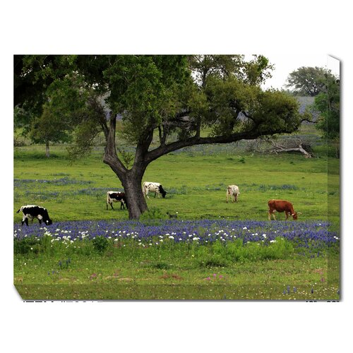 West of the Wind Outdoor Canvas Art Longhorns Grazing Photographic Print on Canvas