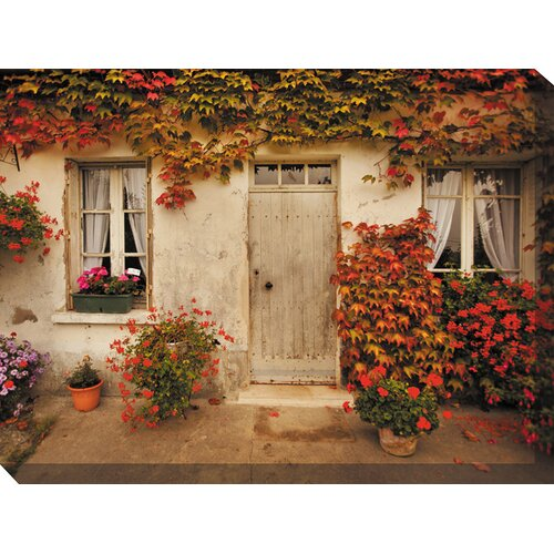 Red Ivy Photographic Print on Canvas
