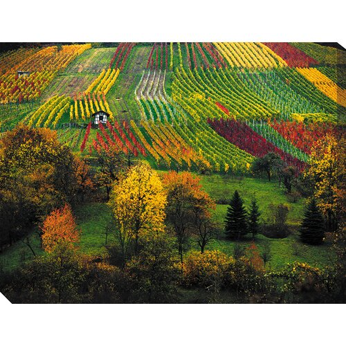 West of the Wind Outdoor Canvas Art Late Harvest Photographic Print on Canvas