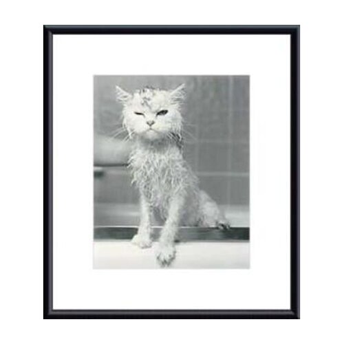 Barewalls Bert's Bath by James Flad Framed Photographic Print