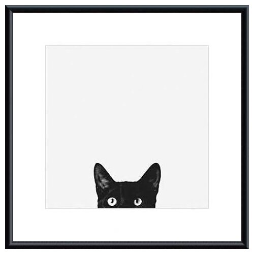 Barewalls 'Curiosity' by Jon Bertelli Framed Photographic Print