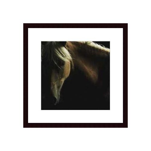 Barewalls 'Spirit Horse' by Tony Stromberg Framed Photographic Print