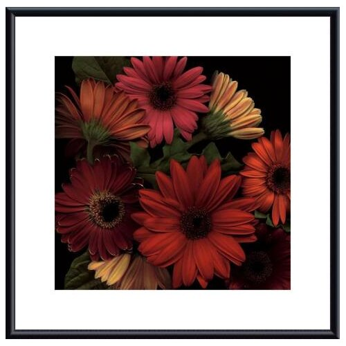 Barewalls Jubilee I by S. Rose Framed Photographic Print