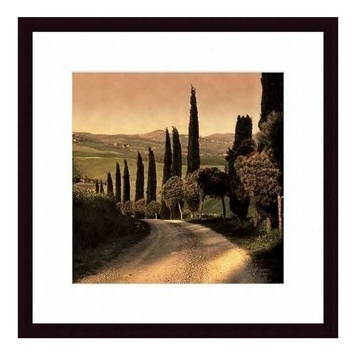 Barewalls 'Country Lane Tuscany' by Elizabeth Carmel Framed Photographic Print