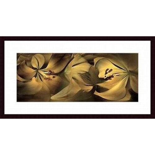Barewalls 'Lilies #35' by Huntington Witherill Framed Graphic Art