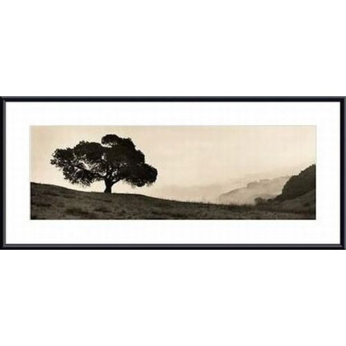 'Black Oak Tree' by Alan Blaustein Framed Photographic Print