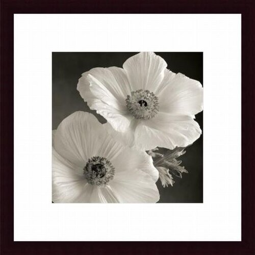 Barewalls Poppy Study I Framed Photographic Print