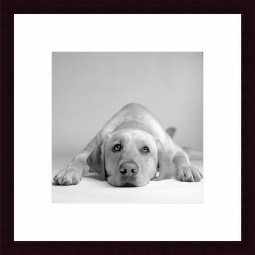 Barewalls Tally by Amanda Jones Framed Photographic Print