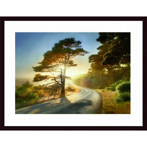 Barewalls Too Much to Ask by William Vanscoy Framed Photographic Print