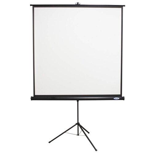 Buhl Matte White Portable Projector Screen