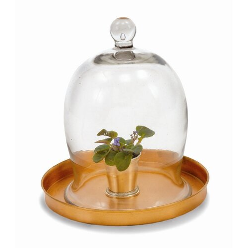 ACHLA Small Bell Jar