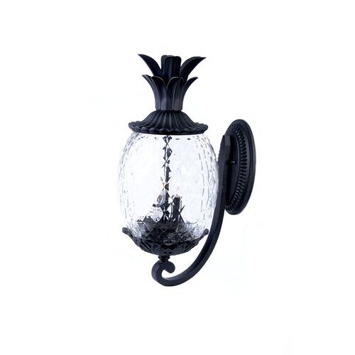 Acclaim Lighting Lanai 2 Light Wall Lantern