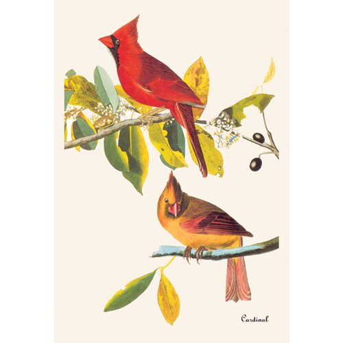 Buyenlarge Cardinal by John James Audubon Graphic Art on Canvas